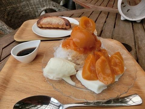 杏かき氷480