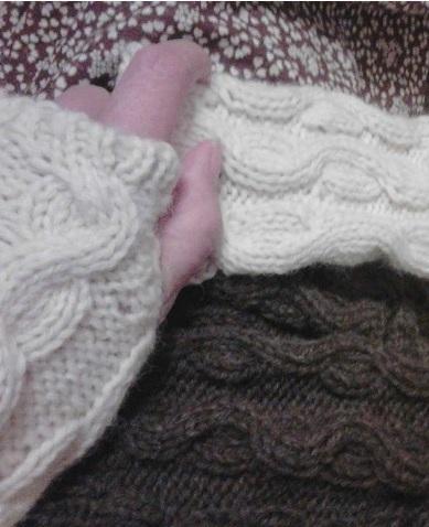 手袋2種.jpg