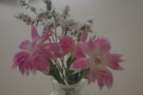 白とピンクの花.jpg