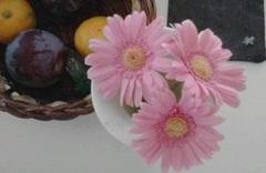 花と果物1.jpg