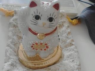 長野のネコちゃん2.jpg